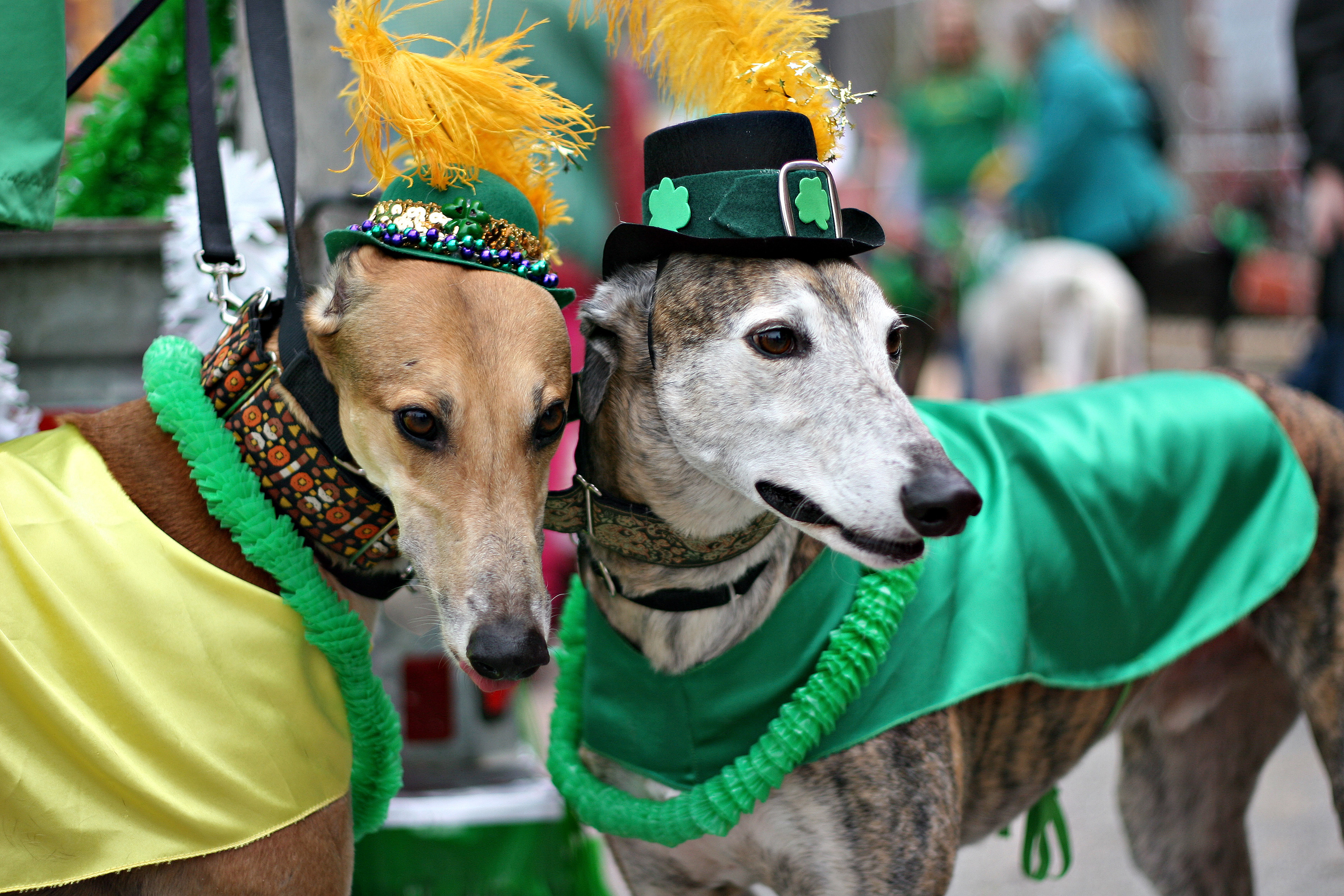 St. Paddy's Day - Peachtree Fair